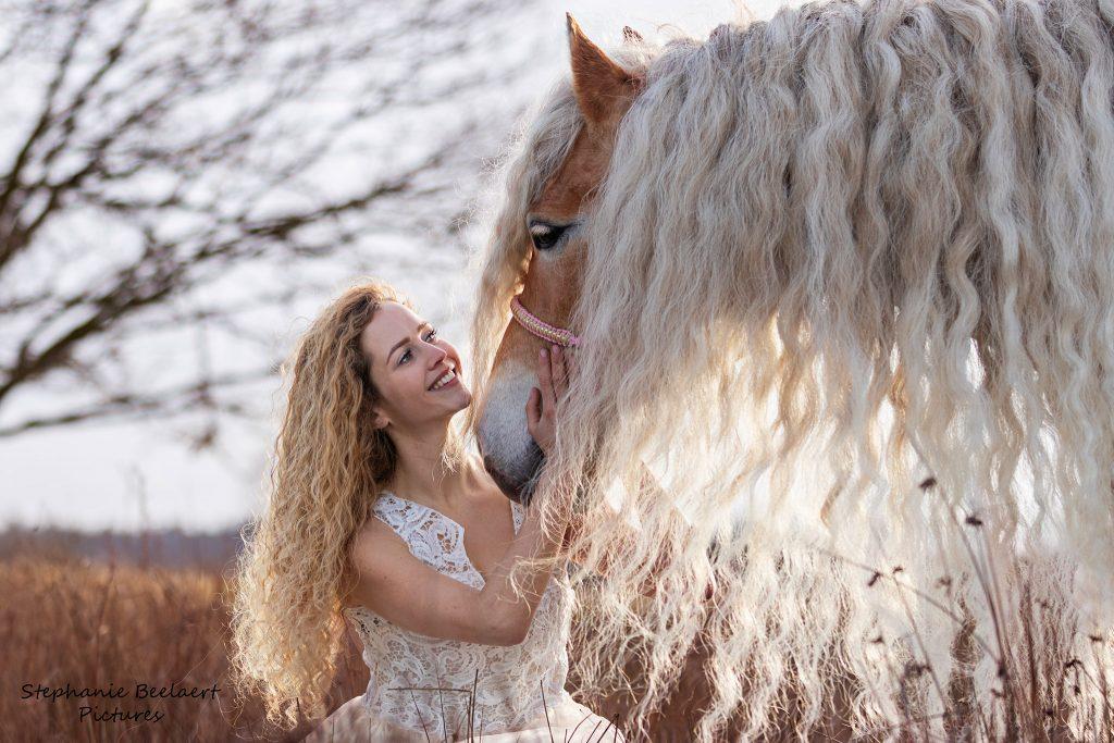 Paardenfotografie 3