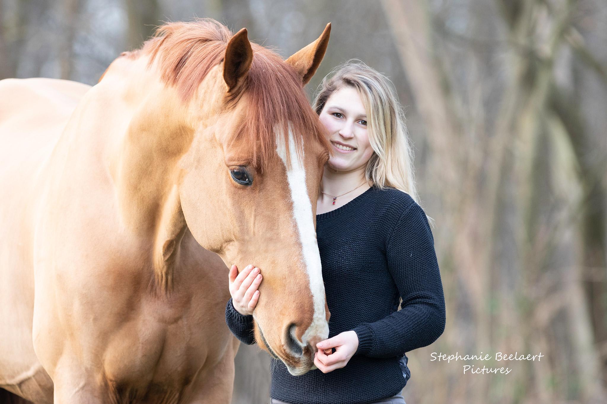 Paardenfotografie 7